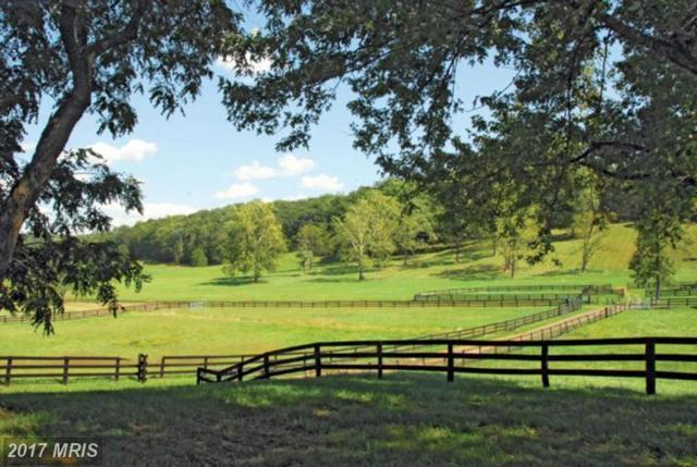 23901 Fred Warren Lane, Middleburg, VA 20117 (#LO8048553) :: Pearson Smith Realty