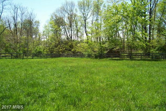 0 St. Louis Rd., Middleburg, VA 20117 (#LO8382593) :: LoCoMusings