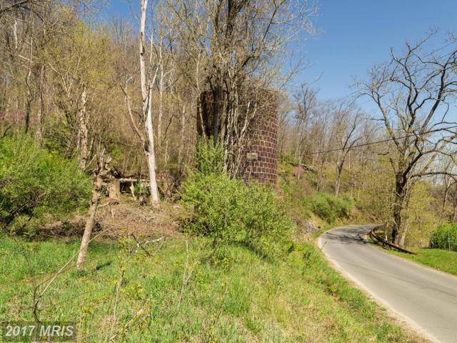 0 Lime Kiln Road, Middleburg, VA 20117 (#LO9632299) :: Pearson Smith Realty
