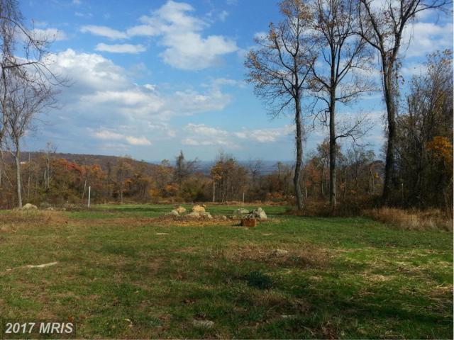 Old Blue Ridge Road, Bluemont, VA 20135 (#LO9777236) :: Pearson Smith Realty