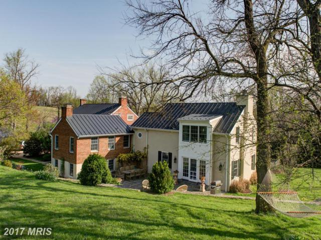 35741 Snake Hill Road, Middleburg, VA 20117 (#LO9790597) :: LoCoMusings