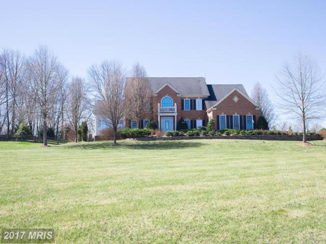 19425 Lancer Circle, Purcellville, VA 20132 (#LO9891871) :: Pearson Smith Realty