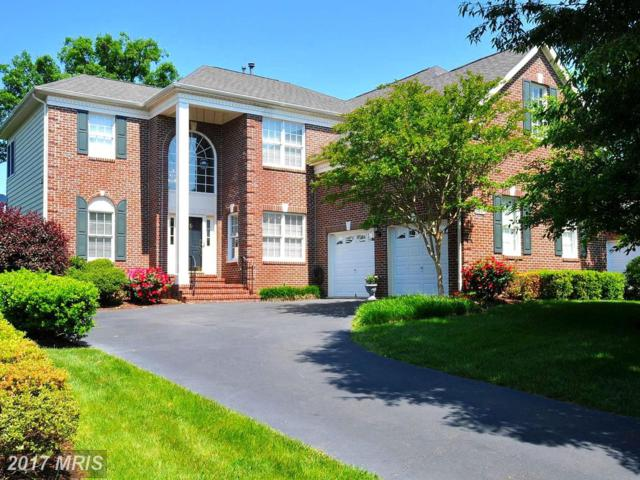 19849 Bethpage Court, Ashburn, VA 20147 (#LO9927681) :: LoCoMusings