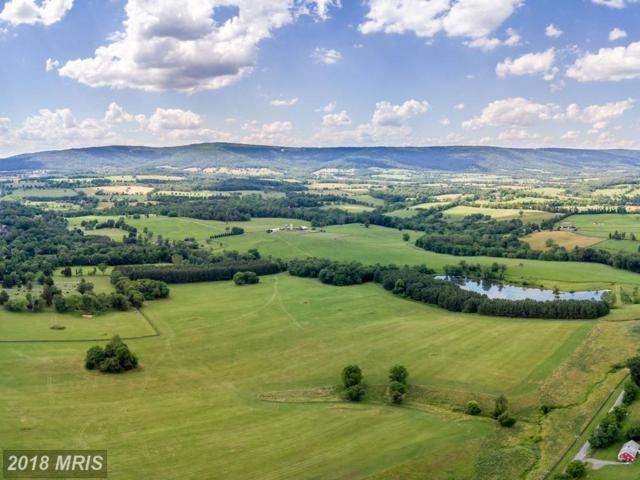 9092 John Mosby Highway, Upperville, VA 20184 (#LO9990783) :: The Maryland Group of Long & Foster