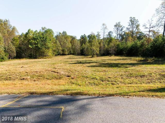 Old Forge Way, Madison, VA 22727 (#MA9797565) :: Advance Realty Bel Air, Inc