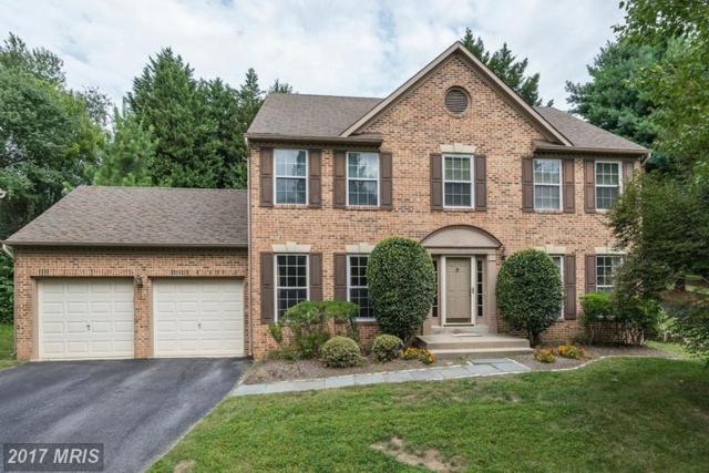 10 Jaystone Court, Silver Spring, MD 20905 (#MC9778354) :: LoCoMusings