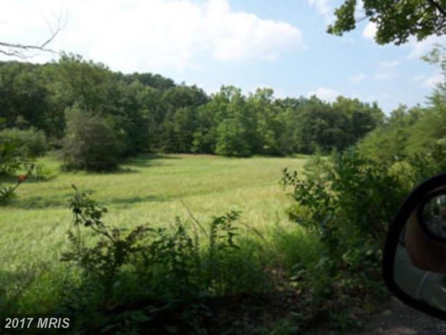 Posey Hollow Road, Berkeley Springs, WV 25411 (#MO7131594) :: LoCoMusings