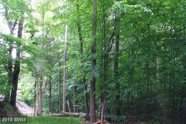 6401 Yates Ford Road, Manassas, VA 20111 (#PW8606037) :: Pearson Smith Realty