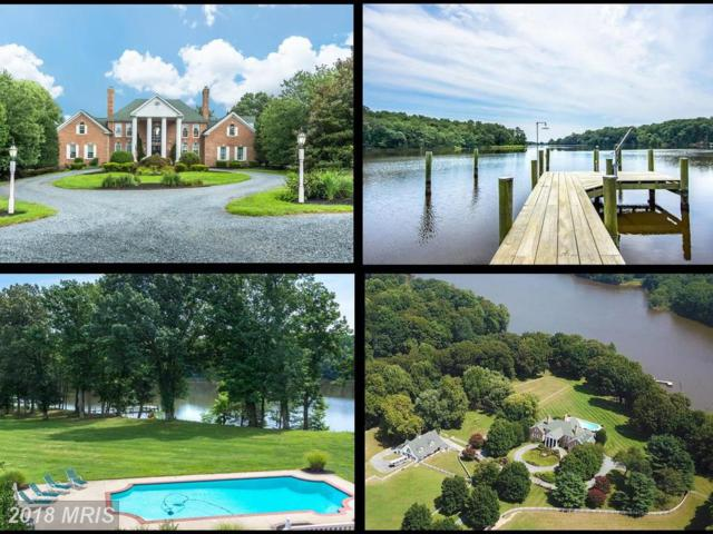 411 Wye East Lane, Queenstown, MD 21658 (#QA10304891) :: The Riffle Group of Keller Williams Select Realtors