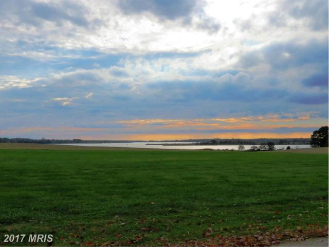 1135 Lands End Road, Centreville, MD 21617 (#QA9776840) :: Pearson Smith Realty