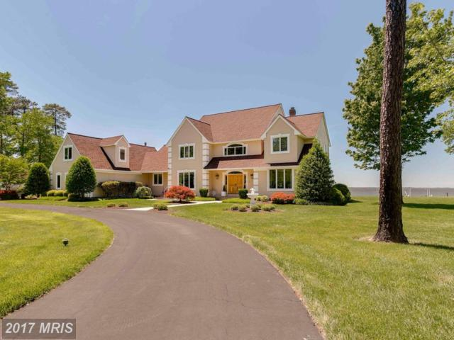 209 Lighthouse View Drive, Stevensville, MD 21666 (#QA9971042) :: Pearson Smith Realty