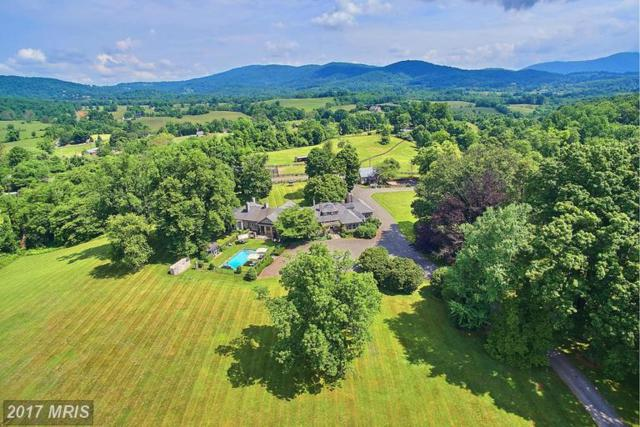 1482 Zachary Taylor Highway, Huntly, VA 22640 (#RP9658968) :: Pearson Smith Realty
