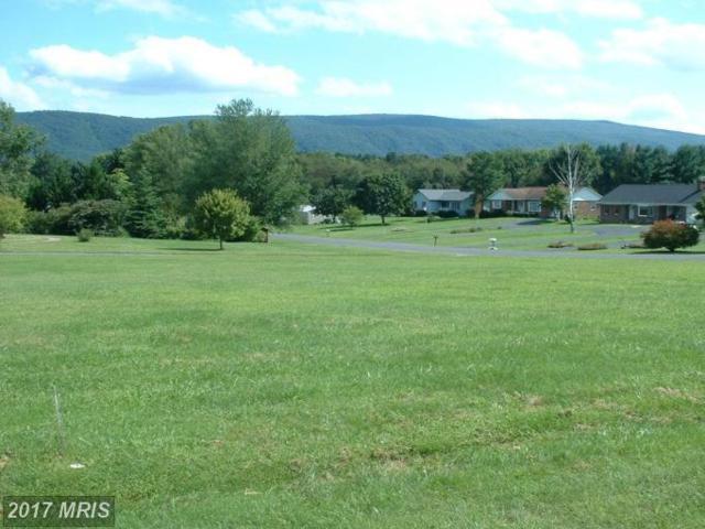 Jackson Street, Woodstock, VA 22664 (#SH7152844) :: LoCoMusings