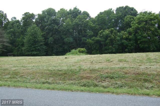 LOT 5 River Drive N, Woodstock, VA 22664 (#SH9524467) :: LoCoMusings