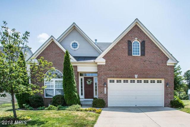 5108 Sewells Pointe Drive, Fredericksburg, VA 22407 (#SP10299366) :: RE/MAX Gateway