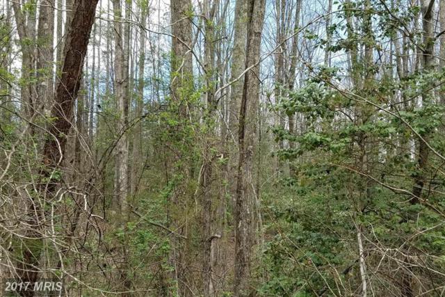 3601 Hidden Acres Way, Partlow, VA 22534 (#SP9506964) :: Pearson Smith Realty