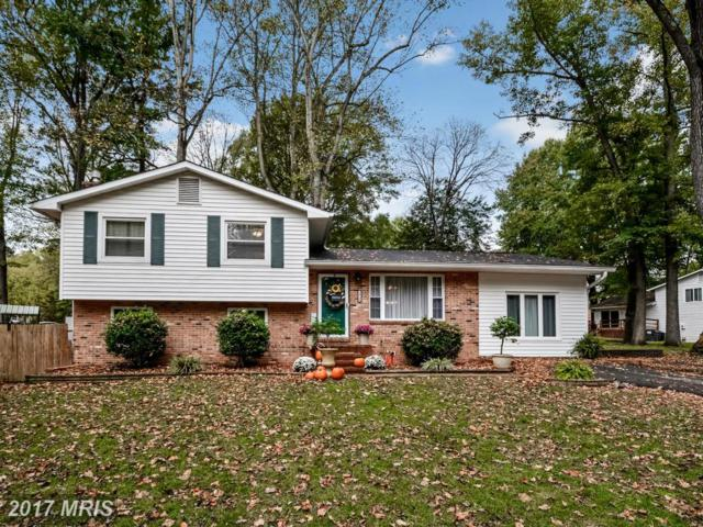 10700 Bluebird Lane, Spotsylvania, VA 22553 (#SP9801502) :: Pearson Smith Realty