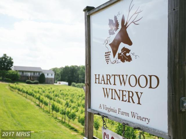 345 Hartwood Road, Fredericksburg, VA 22406 (#ST8718081) :: Pearson Smith Realty