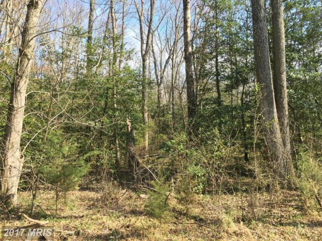 6 Foundation Drive, Fredericksburg, VA 22405 (#ST9561310) :: Pearson Smith Realty