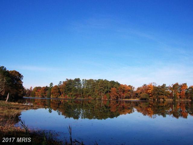 Villa Road, Easton, MD 21601 (#TA8047034) :: Pearson Smith Realty