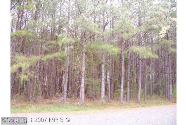Buck Rub Lot #1 Road, Trappe, MD 21673 (#TA8286180) :: Pearson Smith Realty
