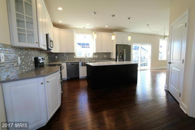 19121 Red Maple Drive, Hagerstown, MD 21742 (#WA9781927) :: LoCoMusings