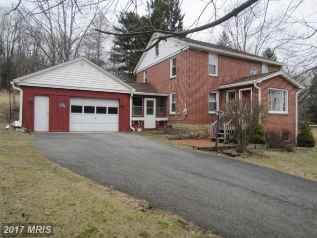 19411 Lower Consol Road NW, Frostburg, MD 21532 (#AL9584679) :: Pearson Smith Realty
