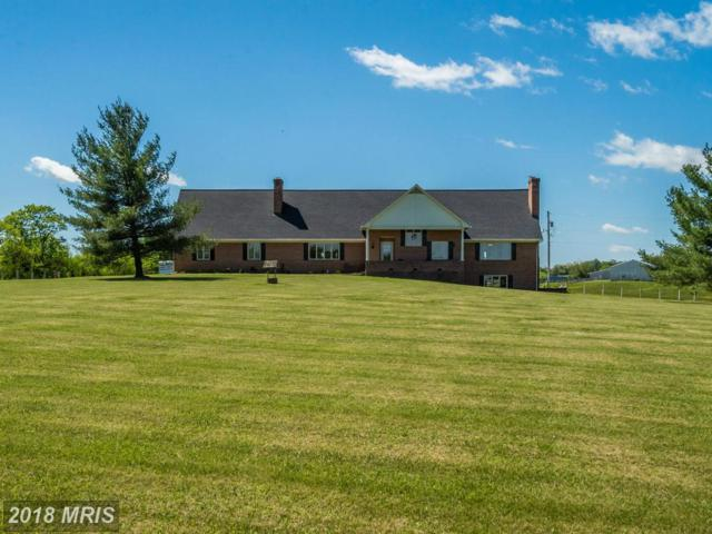 4361 Senseny Road, Berryville, VA 22611 (#CL9935865) :: Pearson Smith Realty