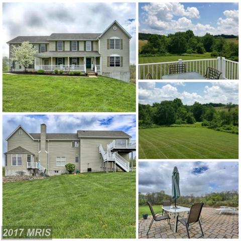 7170 Wanda Drive, Mount Airy, MD 21771 (#CR9892270) :: Pearson Smith Realty