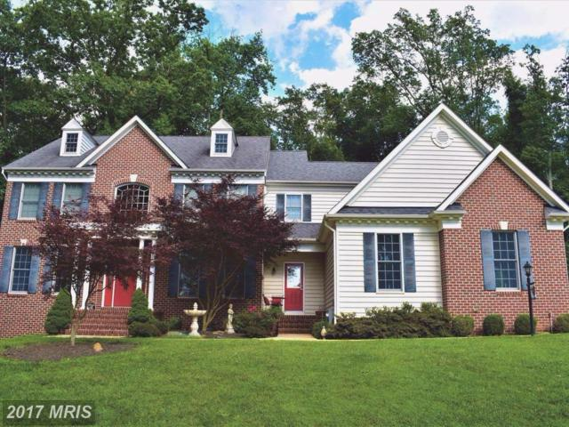 771 Lone Tree Road, Westminster, MD 21157 (#CR9940120) :: Pearson Smith Realty