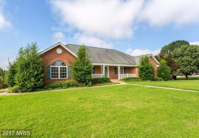 100 Chase Lane, Fredericksburg, VA 22401 (#FB9925073) :: LoCoMusings