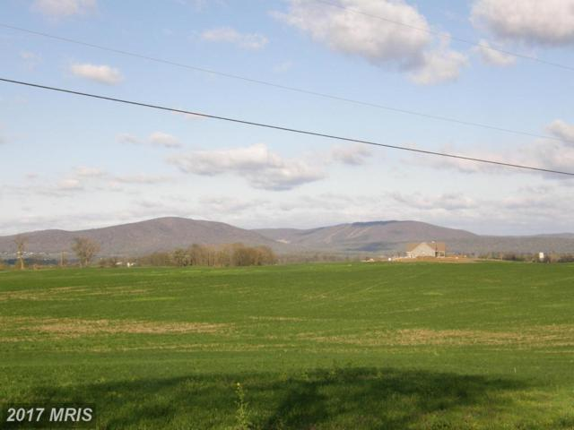Cool Hollow Road, Greencastle, PA 17225 (#FL8538420) :: Pearson Smith Realty