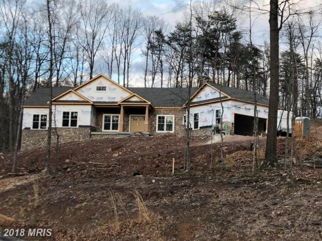 Whistlewood Lane, Winchester, VA 22602 (#FV10066293) :: The Maryland Group of Long & Foster