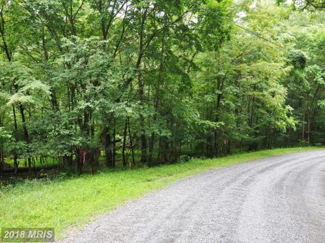 L-55 Logger Drive, Gore, VA 22637 (#FV8134412) :: Pearson Smith Realty