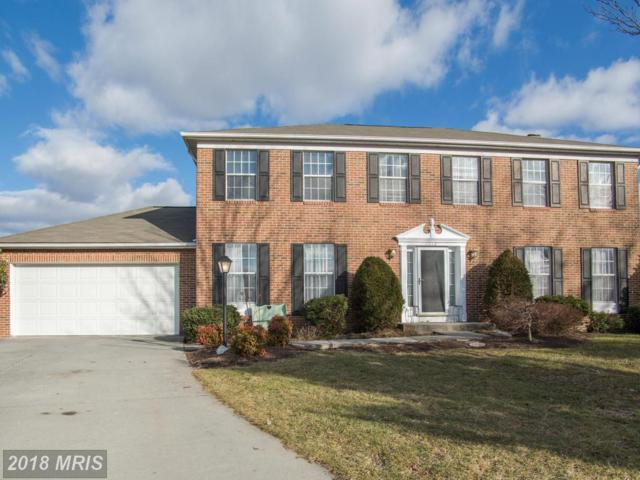 112 Dinwiddie Court, Stephens City, VA 22655 (#FV9592417) :: Pearson Smith Realty