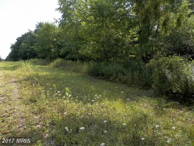 Westview Crossing Road, Grantsville, MD 21536 (#GA7883180) :: LoCoMusings
