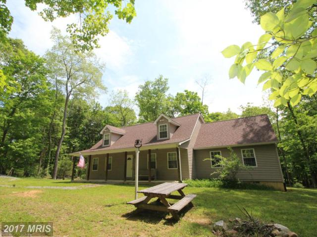 556 Highview Rd., Lost River, WV 26810 (#HD9627247) :: Pearson Smith Realty