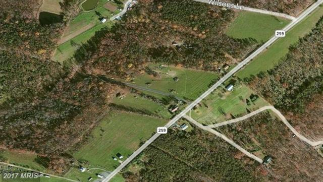 Hampshire House Drive, High View, WV 26808 (#HS7963394) :: LoCoMusings