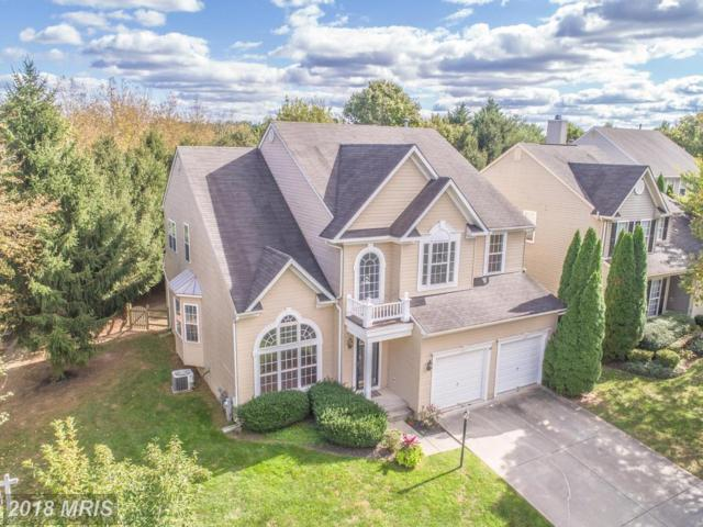 6001 Pure Sky Place, Clarksville, MD 21029 (#HW10025028) :: Pearson Smith Realty