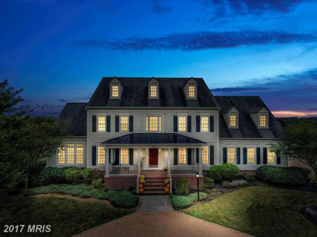38057 Forest Mills Road, Leesburg, VA 20175 (#LO9782978) :: Pearson Smith Realty