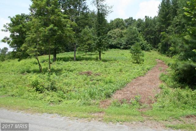 Glebe Run Village Drive, Madison, VA 22727 (#MA8705328) :: LoCoMusings