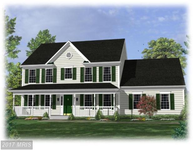 Holly Ridge Road, Unionville, VA 22567 (#OR7868603) :: Pearson Smith Realty
