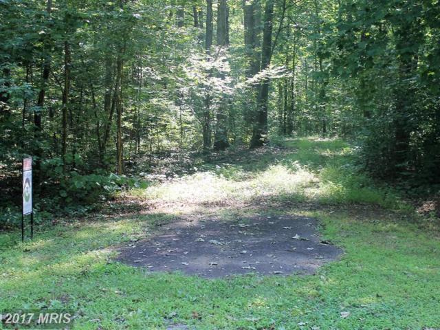 Morel Way, Rhoadesville, VA 22542 (#OR9721020) :: LoCoMusings