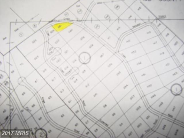 Off Cross Creek, Luray, VA 22835 (#PA7825058) :: Pearson Smith Realty
