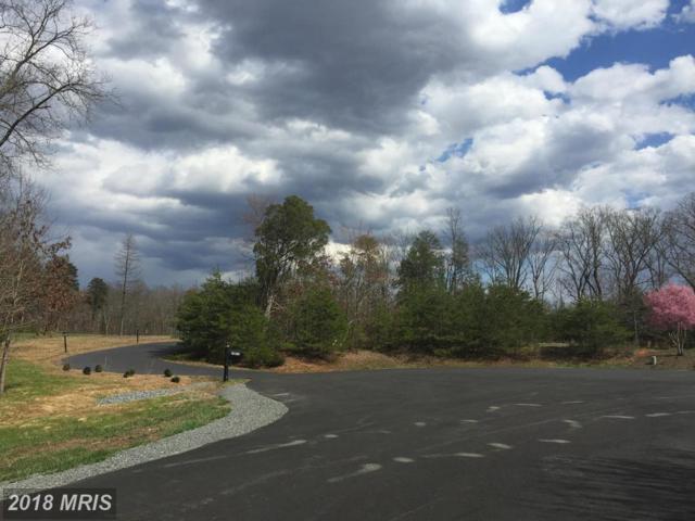 14960 Stream Valley Court, Haymarket, VA 20169 (#PW9603020) :: Green Tree Realty
