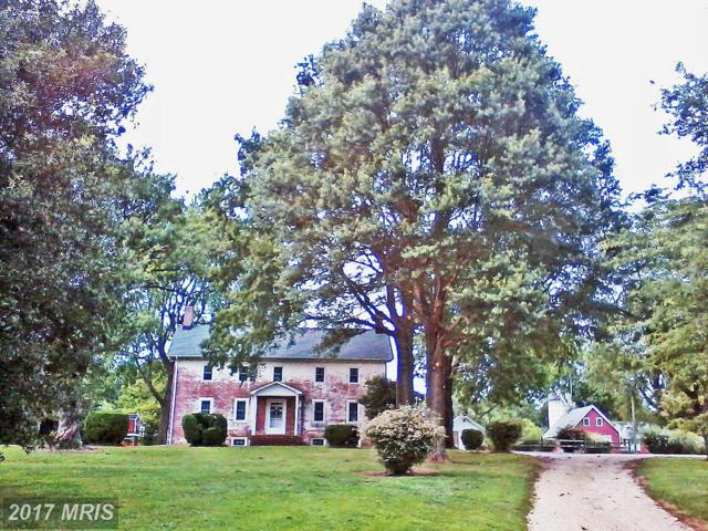 310 Fort Point Lane, Centreville, MD 21617 (#QA9531397) :: Pearson Smith Realty