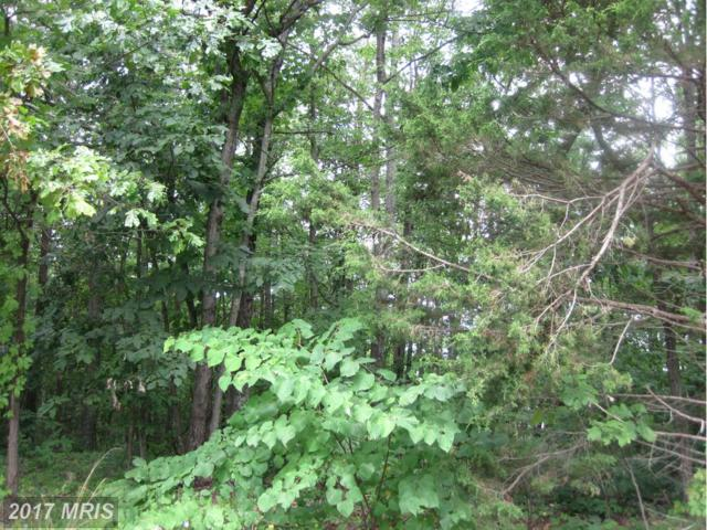 Basswood, Basye, VA 22810 (#SH7120541) :: LoCoMusings