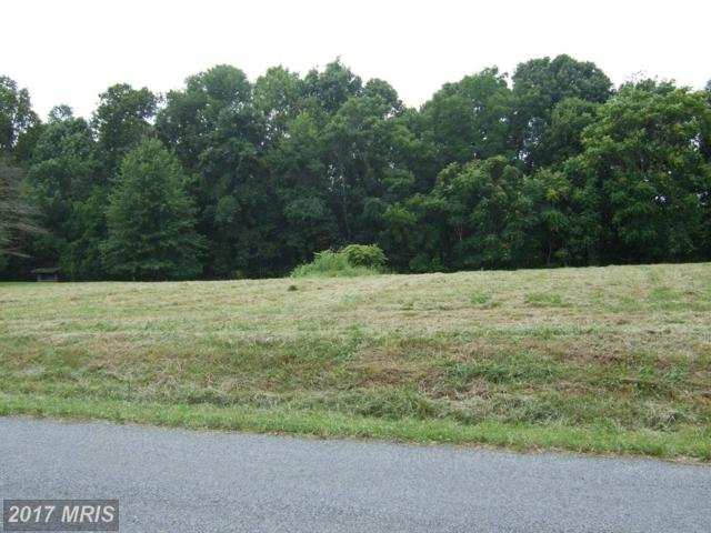 LOT 5 River Drive N, Woodstock, VA 22664 (#SH9524467) :: LoCoMusings