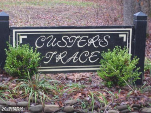Custers Trace, Spotsylvania, VA 22553 (#SP8136914) :: Pearson Smith Realty