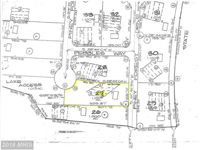 11332 Piney Forest Drive, Bumpass, VA 23024 (#SP8686610) :: Pearson Smith Realty